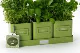 Zvětšit fotografii - Květináčky na bylinky Burgon&Ball Lime Green