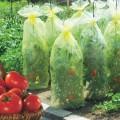 Kryt na rajčata Tomatotube 0,6 x 10 m