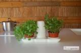 Quizcamp Minigarden Basic S - pěstební systém