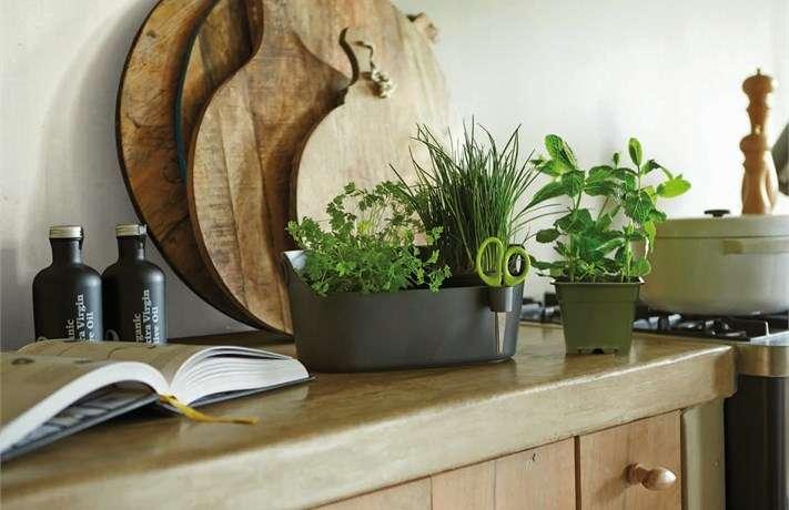 Elho Obal Brussels Herbs Station na bylinky