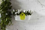 Elho Truhlík Corsica Birdgarden 47 cm 2v1