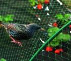 Síť proti ptákům Birdnet HDPE