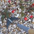 Burgon&Ball Weed Slice na odstranění plevelů