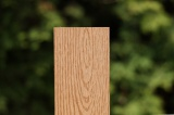 Wpc plotové prkno struktura dřeva 8,5x1,3x300 cm