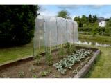 Ocelová tyč ohnutá Tomato Tuteur zelená 180 x 30cm