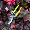 Burgon&Ball Žluté kapesní zahradní nůžky FloraBrite®, 17 cm