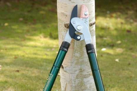 Teleskopické nůžky na větve s kombinovaným chodem a skládací prořezávací pilka - Zahradnický set Burgon&Ball