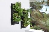 Zvětšit fotografii - Truhlík vertikální na salát, bylinky ,dvojbalení