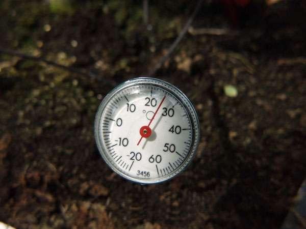 Vitavia Garden Skleníkový teploměr do půdy Vitavia