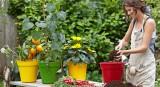 Elho Květináč Green Basics Growpot 30 cm