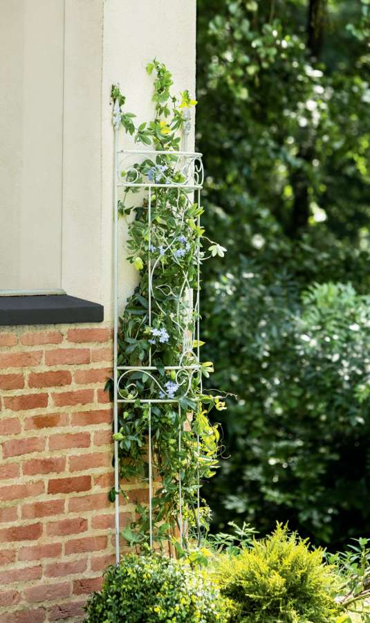 Intermas Flor metal Trellis dekorativní podpora rostlin 41 x 12 x 180 cm