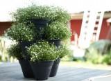 Květináče Green Basics Growset s miskou